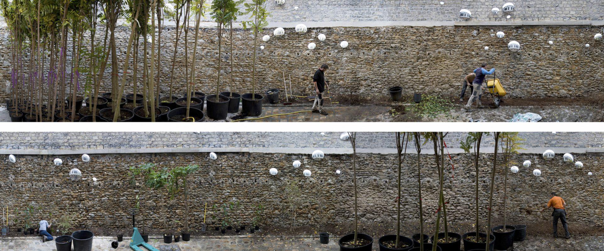 Le 19° fleurit au 104, Paris, Automne 2008